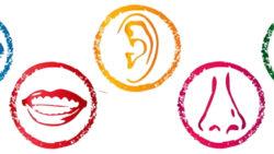 Dis-percezione: Cause e Sintomi